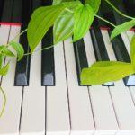 実技ピアノ